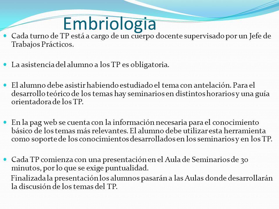 Embriologia Cada turno de TP está a cargo de un cuerpo docente supervisado por un Jefe de Trabajos Prácticos. La asistencia del alumno a los TP es obl