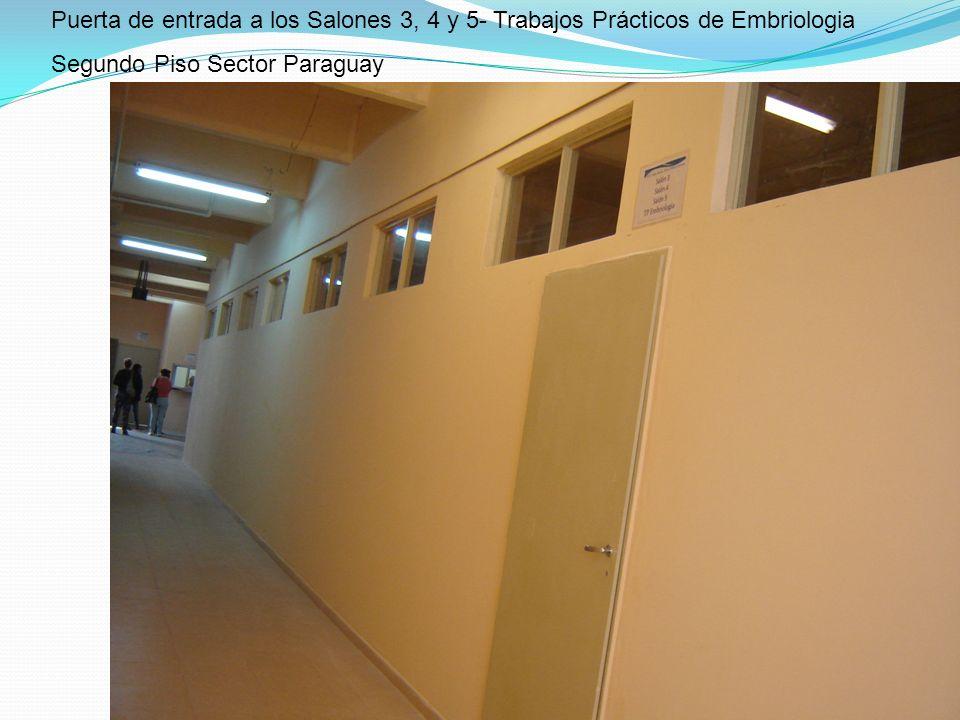 Puerta de entrada a los Salones 3, 4 y 5- Trabajos Prácticos de Embriologia Segundo Piso Sector Paraguay
