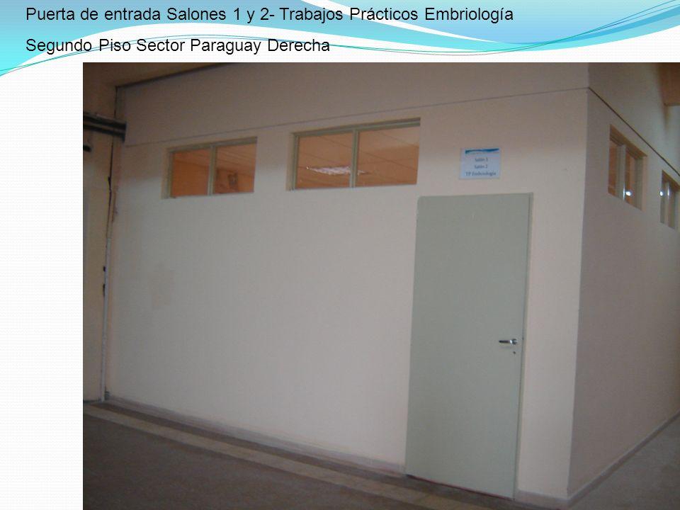 Puerta de entrada Salones 1 y 2- Trabajos Prácticos Embriología Segundo Piso Sector Paraguay Derecha