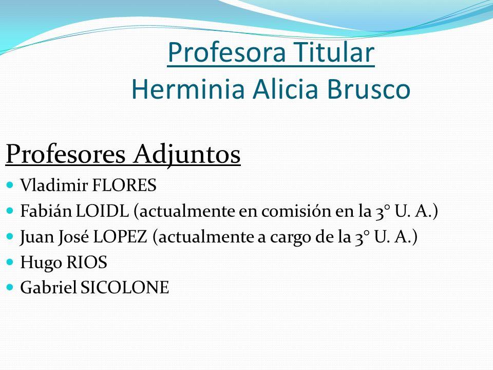 Profesora Titular Herminia Alicia Brusco Profesores Adjuntos Vladimir FLORES Fabián LOIDL (actualmente en comisión en la 3° U. A.) Juan José LOPEZ (ac