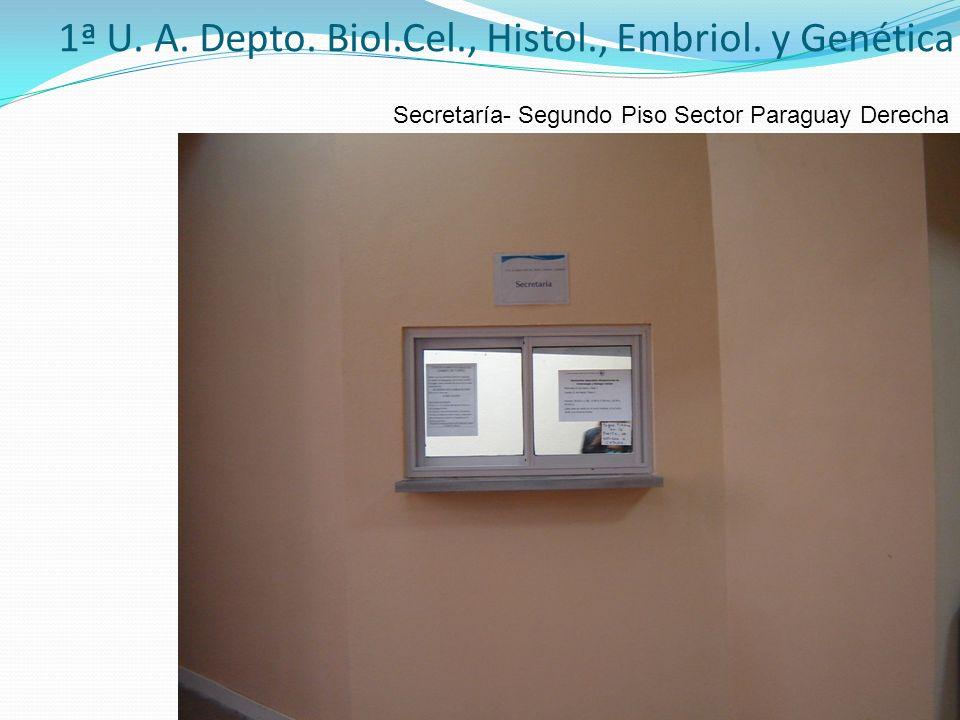 1ª U. A. Depto. Biol.Cel., Histol., Embriol. y Genética Secretaría- Segundo Piso Sector Paraguay Derecha