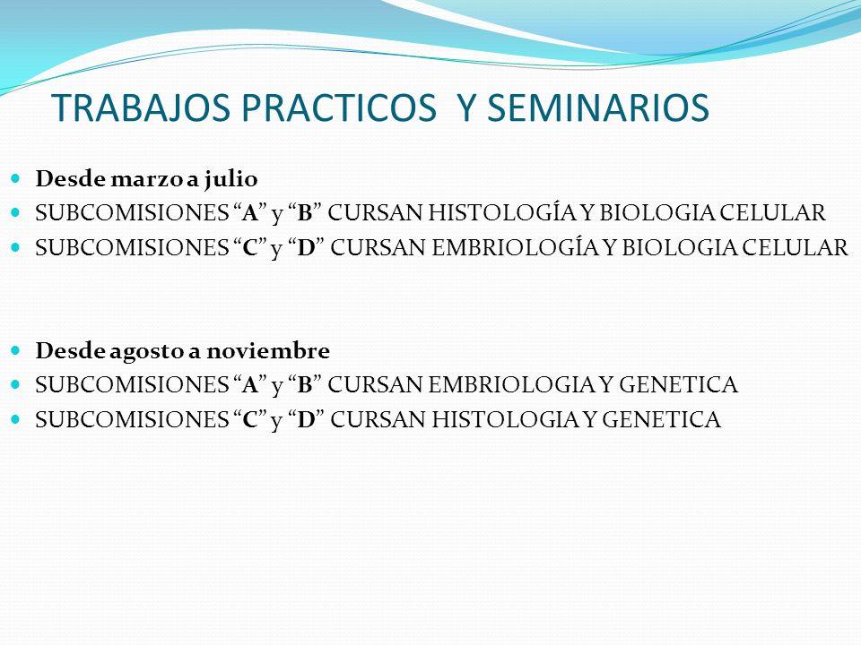 TRABAJOS PRACTICOS Y SEMINARIOS Desde marzo a julio SUBCOMISIONES A y B CURSAN HISTOLOGÍA Y BIOLOGIA CELULAR SUBCOMISIONES C y D CURSAN EMBRIOLOGÍA Y