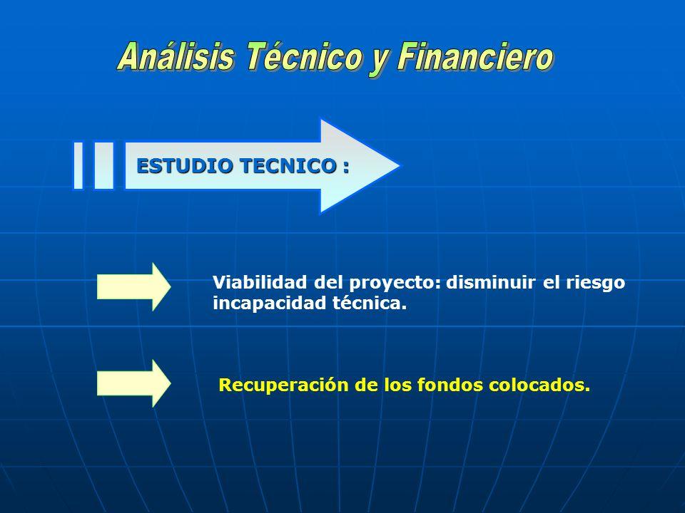 ESTUDIO TECNICO : Viabilidad del proyecto: disminuir el riesgo incapacidad técnica. Recuperación de los fondos colocados.