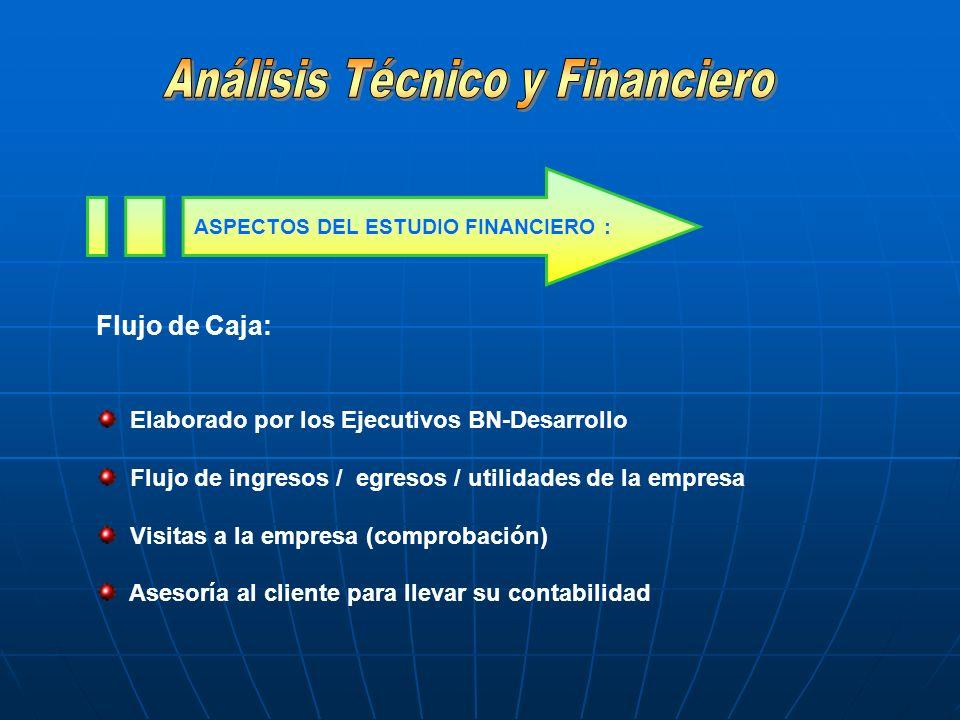 Flujo de Caja: Elaborado por los Ejecutivos BN-Desarrollo Flujo de ingresos / egresos / utilidades de la empresa Visitas a la empresa (comprobación) A