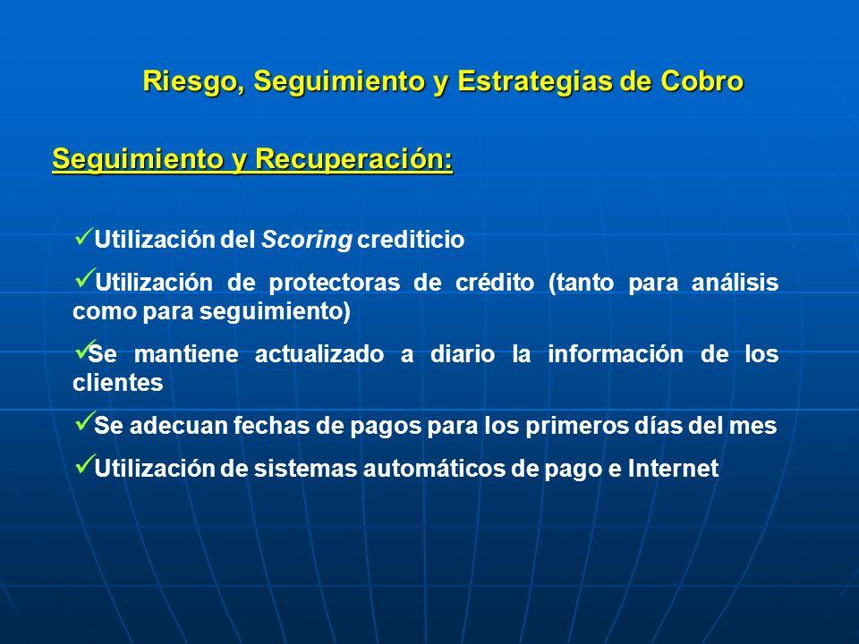 Riesgo, Seguimiento y Estrategias de Cobro Utilización del Scoring crediticio Utilización de protectoras de crédito (tanto para análisis como para seg