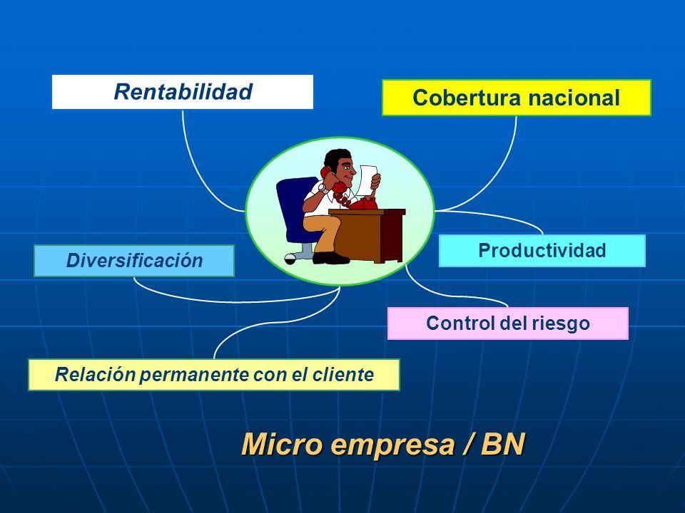 Rentabilidad Cobertura nacional Diversificación Control del riesgo Relación permanente con el cliente Productividad Micro empresa / BN