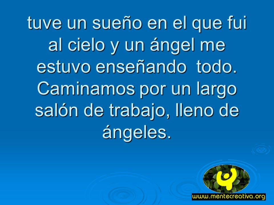 tuve un sueño en el que fui al cielo y un ángel me estuvo enseñando todo.