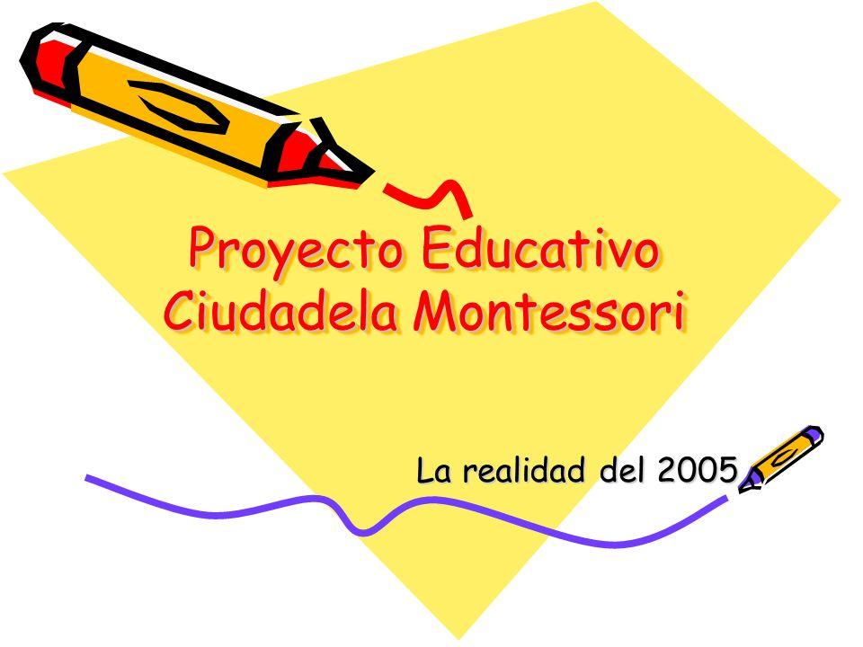 Proyecto Educativo Ciudadela Montessori La realidad del 2005