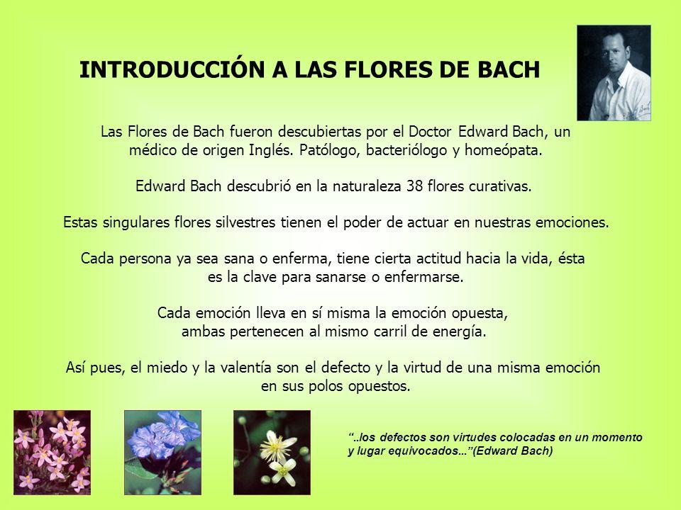 INTRODUCCIÓN A LAS FLORES DE BACH Las Flores de Bach fueron descubiertas por el Doctor Edward Bach, un médico de origen Inglés.