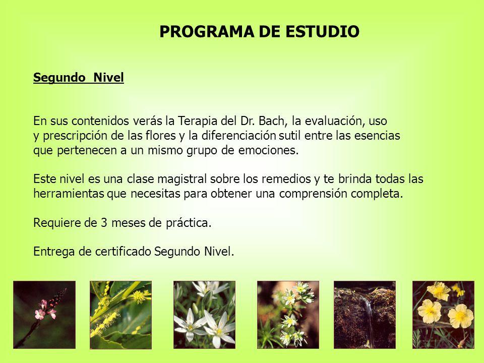 PROGRAMA DE ESTUDIO Segundo Nivel En sus contenidos verás la Terapia del Dr.