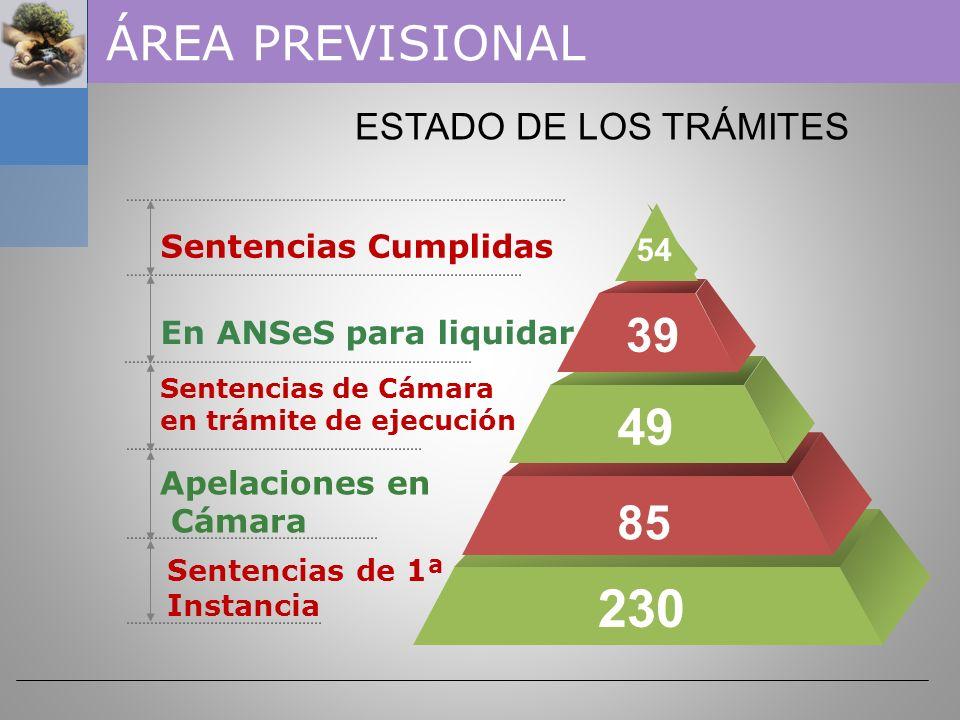 NOVEDADES DEL DÍA ALDIGERI, María – Asignación causa a SALA II 211 Sentencia de Cámara - SALA I 221 Sentencia de 1ª Instancia (Juzgado Nº 2) 23 24