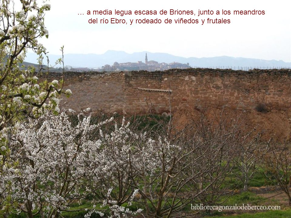 a tiro de piedra de San Asensio… LA RIOJA Biblioteca Gonzalo de Berceo