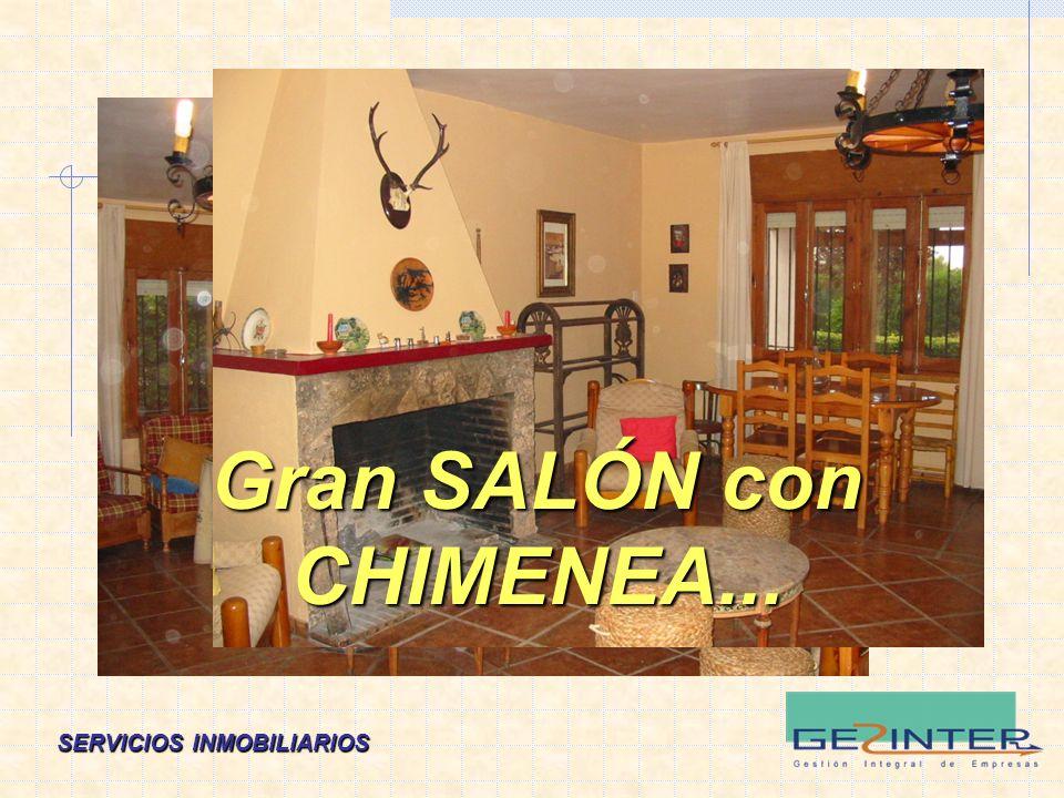 SERVICIOS INMOBILIARIOS Gran SALÓN con CHIMENEA...