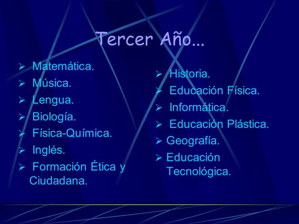 Cantidad de materias: Primer año: Lengua- Inglés- Matemática- Biología- Física- Química- Historia- Geografía- Educación Tecnológica- Educación Plástic
