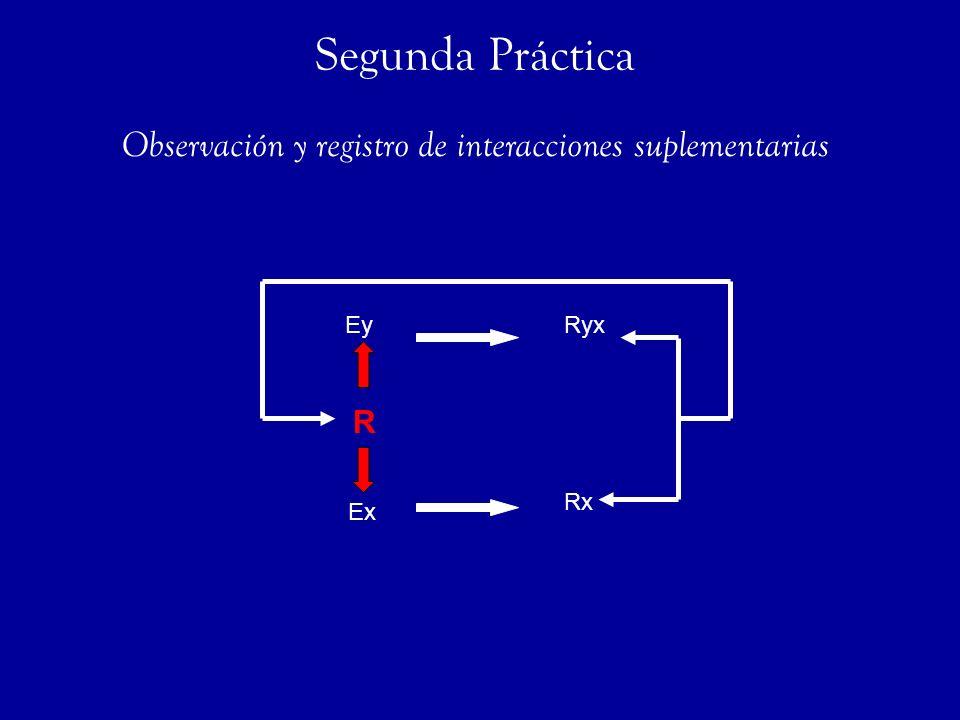 Ex Rx RyxEy R Observación y registro de interacciones suplementarias Segunda Práctica