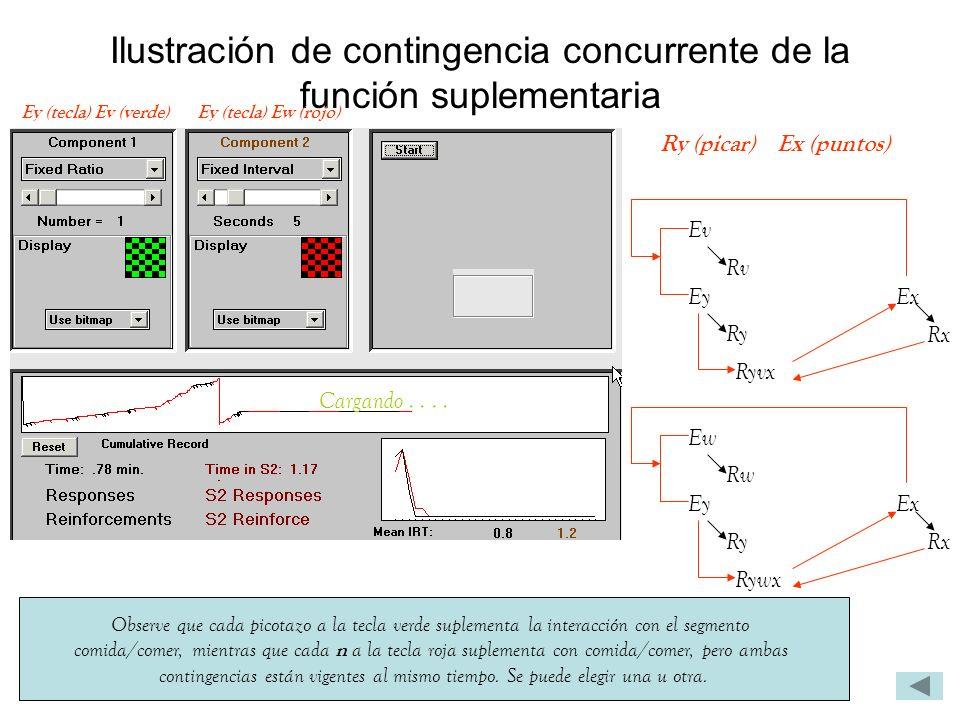 Ilustración de contingencia concurrente de la función suplementaria Observe que cada picotazo a la tecla verde suplementa la interacción con el segmen