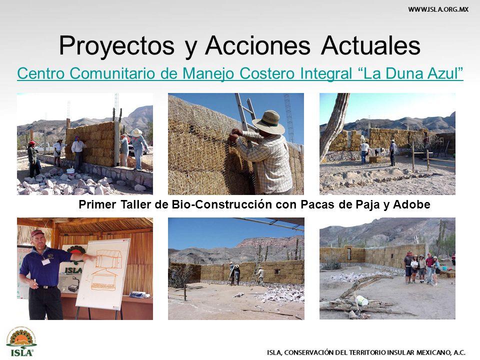 Proyectos y Acciones Actuales Centro Comunitario de Manejo Costero Integral La Duna Azul Primer Taller de Bio-Construcción con Pacas de Paja y Adobe