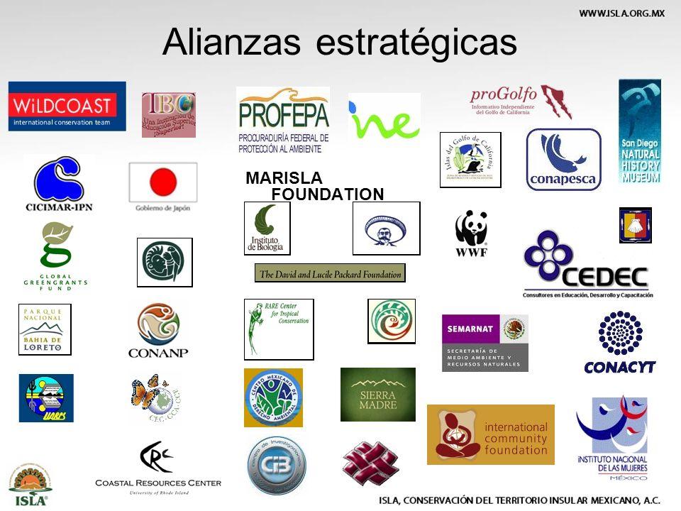 Alianzas estratégicas MARISLA FOUNDATION