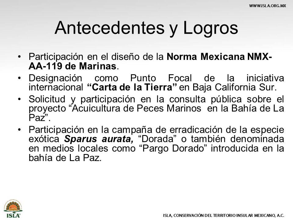 Antecedentes y Logros Participación en el diseño de la Norma Mexicana NMX- AA-119 de Marinas. Designación como Punto Focal de la iniciativa internacio