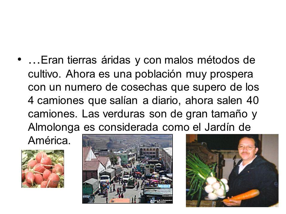 … Eran tierras áridas y con malos métodos de cultivo. Ahora es una población muy prospera con un numero de cosechas que supero de los 4 camiones que s