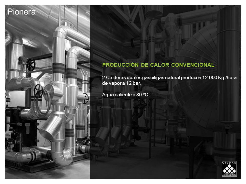 PRODUCCIÓN DE CALOR CONVENCIONAL 2 Calderas duales gasoil/gas natural producen 12.000 Kg./hora de vapor a 12 bar.