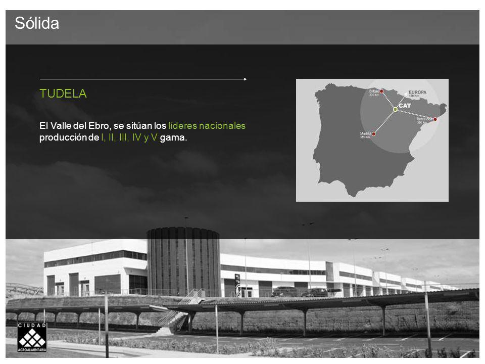 TUDELA El Valle del Ebro, se sitúan los líderes nacionales producción de I, II, III, IV y V gama.