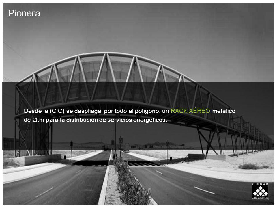 El objetivo de la CIC, es evitar la inversión en instalaciones particulares de cada empresa.