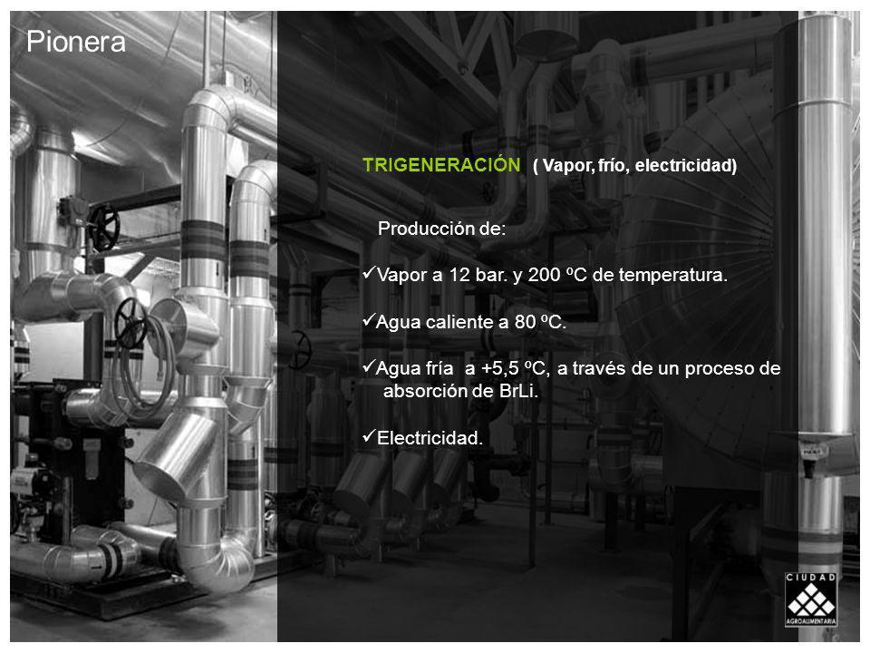TRIGENERACIÓN ( Vapor, frío, electricidad) Producción de: Vapor a 12 bar.