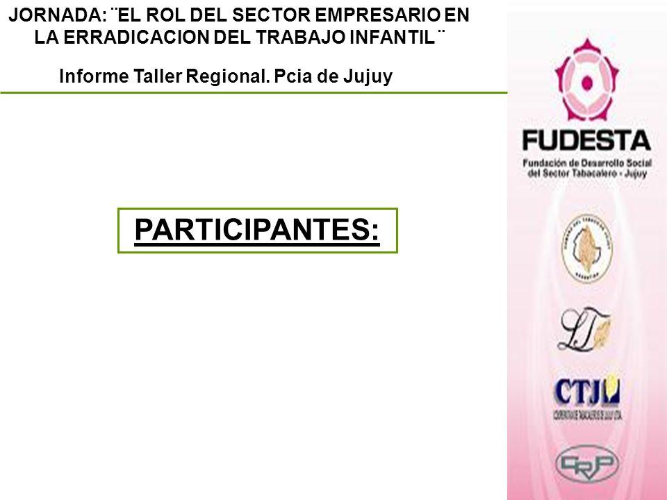 JORNADA: ¨EL ROL DEL SECTOR EMPRESARIO EN LA ERRADICACION DEL TRABAJO INFANTIL ¨ Informe Taller Regional. Pcia de Jujuy PARTICIPANTES: