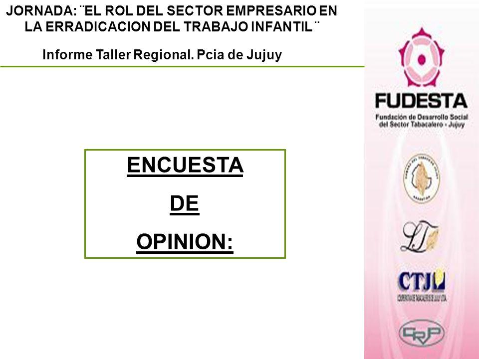 JORNADA: ¨EL ROL DEL SECTOR EMPRESARIO EN LA ERRADICACION DEL TRABAJO INFANTIL ¨ Informe Taller Regional. Pcia de Jujuy ENCUESTA DE OPINION: