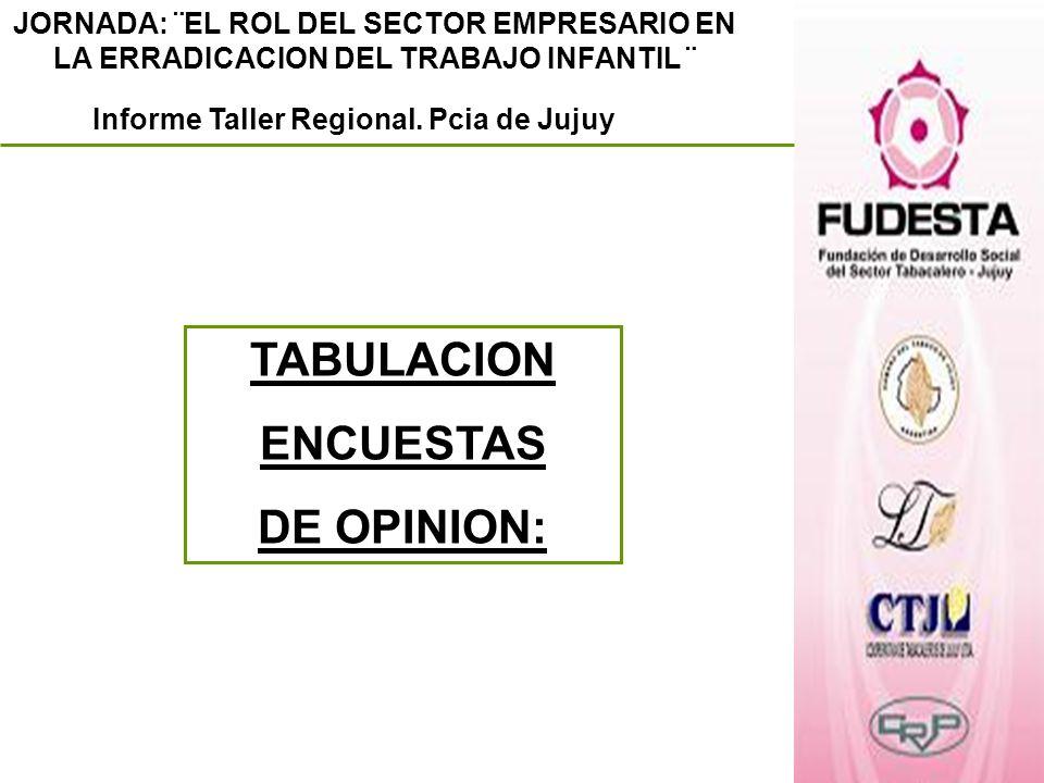 JORNADA: ¨EL ROL DEL SECTOR EMPRESARIO EN LA ERRADICACION DEL TRABAJO INFANTIL ¨ Informe Taller Regional. Pcia de Jujuy TABULACION ENCUESTAS DE OPINIO
