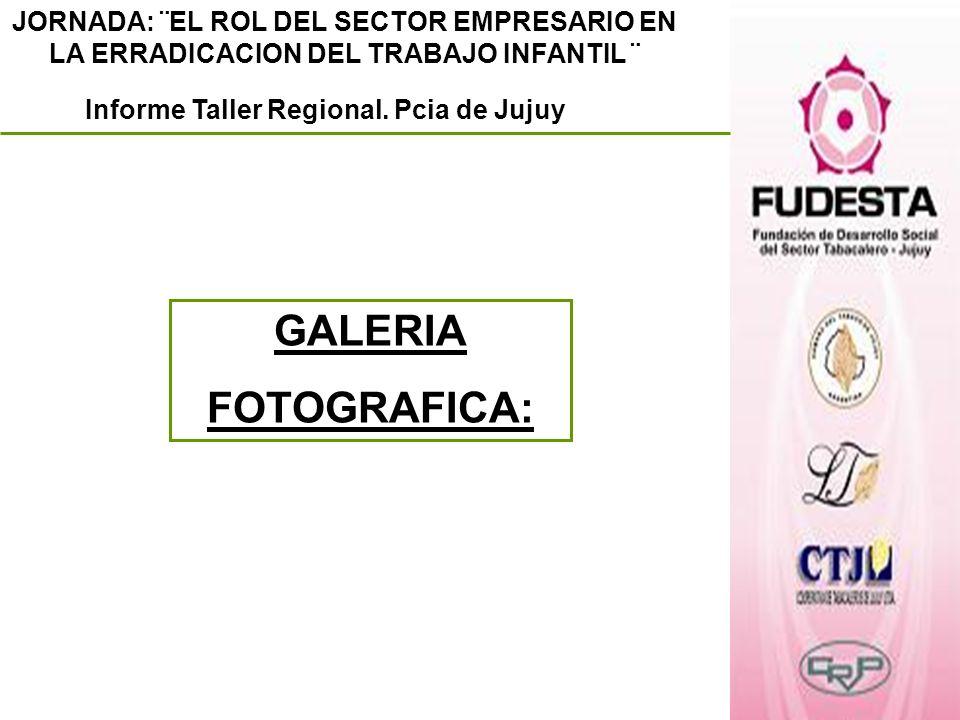 JORNADA: ¨EL ROL DEL SECTOR EMPRESARIO EN LA ERRADICACION DEL TRABAJO INFANTIL ¨ Informe Taller Regional. Pcia de Jujuy GALERIA FOTOGRAFICA: