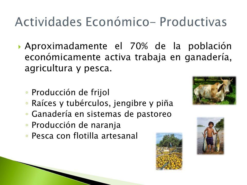Aproximadamente el 70% de la población económicamente activa trabaja en ganadería, agricultura y pesca. Producción de frijol Raíces y tubérculos, jeng