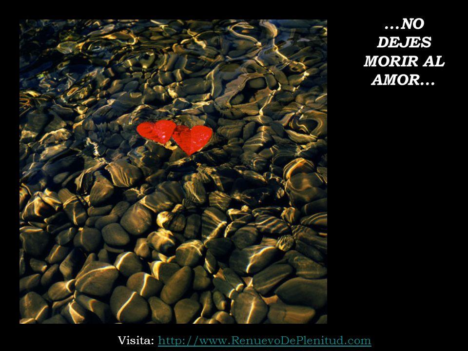 ...NO DEJES MORIR AL AMOR... Visita: http://www.RenuevoDePlenitud.comhttp://www.RenuevoDePlenitud.com