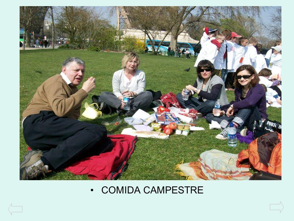 COMIDA CAMPESTRE
