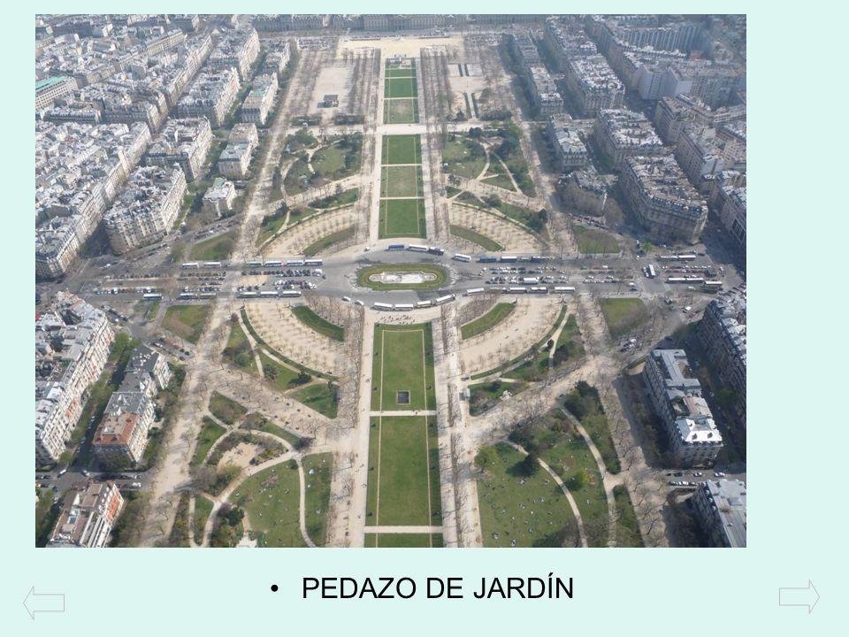 PEDAZO DE JARDÍN