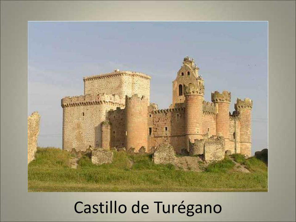 Castillo de Fonseca - Coca