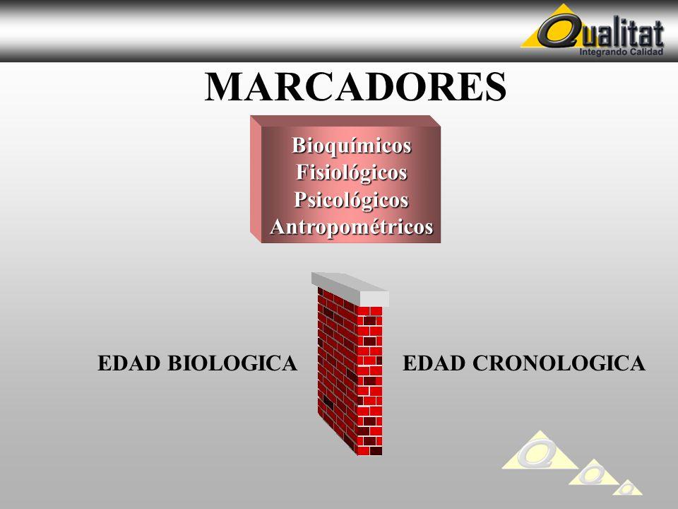 MARCADORES BioquímicosFisiológicosPsicológicosAntropométricos EDAD BIOLOGICAEDAD CRONOLOGICA