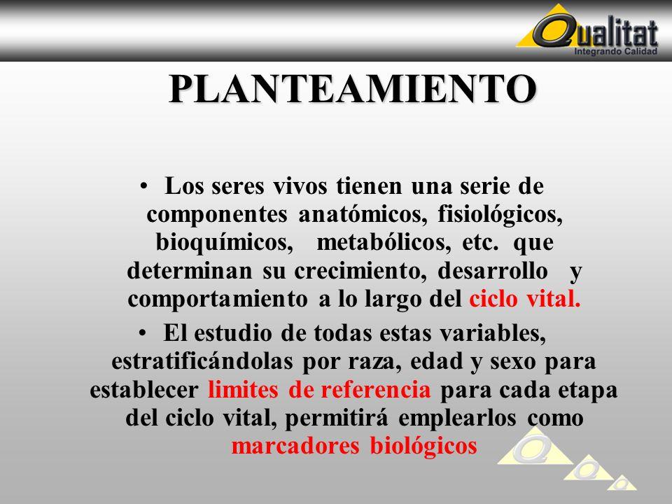 PLANTEAMIENTO PLANTEAMIENTO Los seres vivos tienen una serie de componentes anatómicos, fisiológicos, bioquímicos, metabólicos, etc. que determinan su
