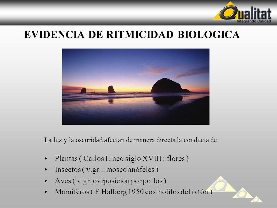 EVIDENCIA DE RITMICIDAD BIOLOGICA La luz y la oscuridad afectan de manera directa la conducta de: Plantas ( Carlos Lineo siglo XVIII : flores ) Insect
