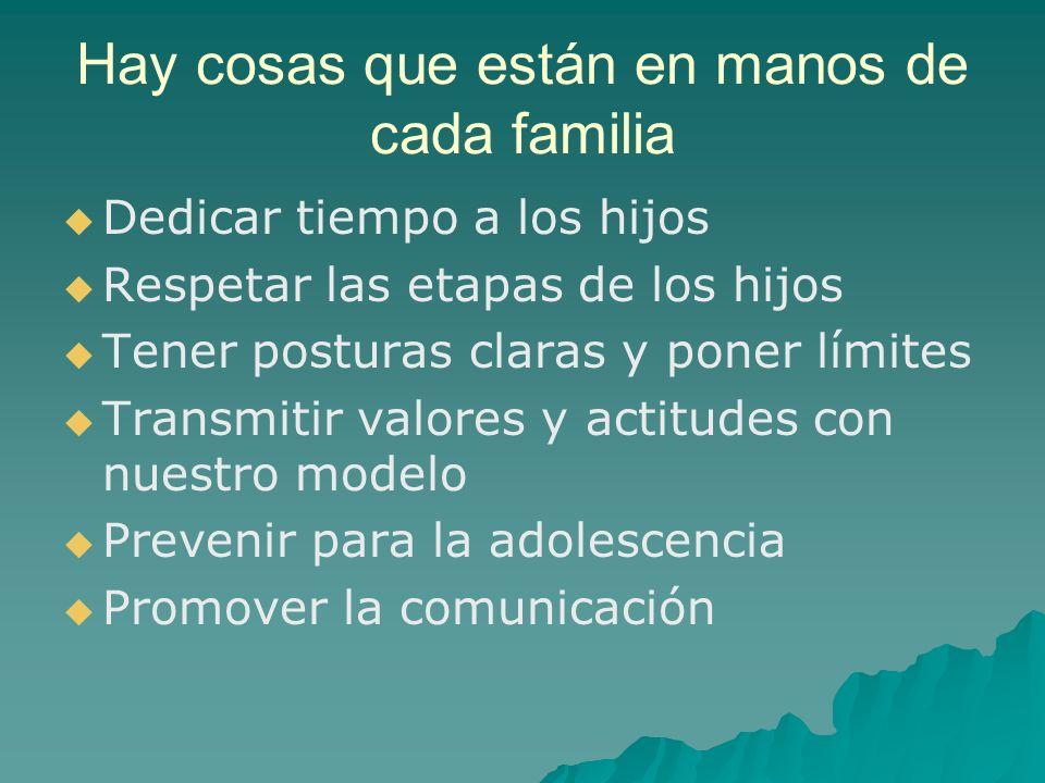 Hay cosas que están en manos de cada familia Dedicar tiempo a los hijos Respetar las etapas de los hijos Tener posturas claras y poner límites Transmi
