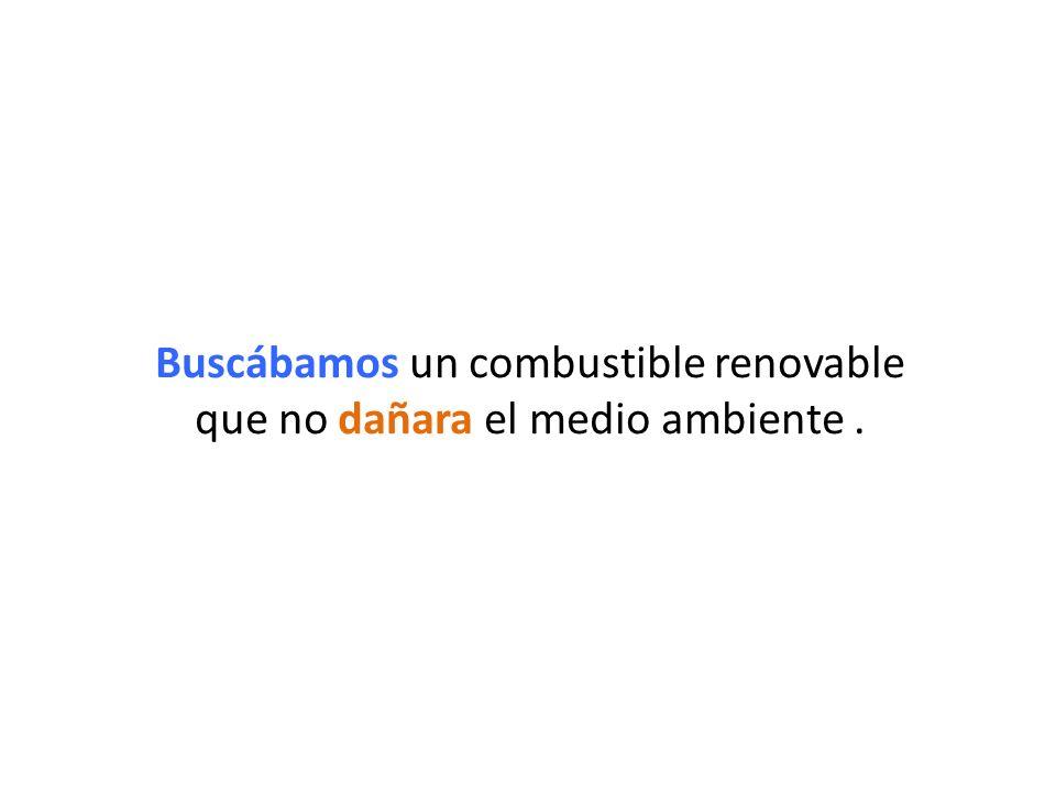 Buscábamos un combustible renovable que no dañara el medio ambiente.