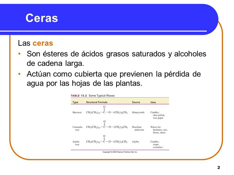 2 Ceras Las ceras Son ésteres de ácidos grasos saturados y alcoholes de cadena larga. Actúan como cubierta que previenen la pérdida de agua por las ho