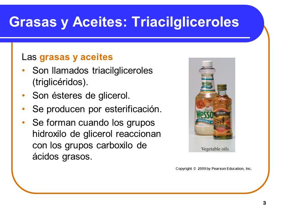 3 Grasas y Aceites: Triacilgliceroles Las grasas y aceites Son llamados triacilgliceroles (triglicéridos). Son ésteres de glicerol. Se producen por es