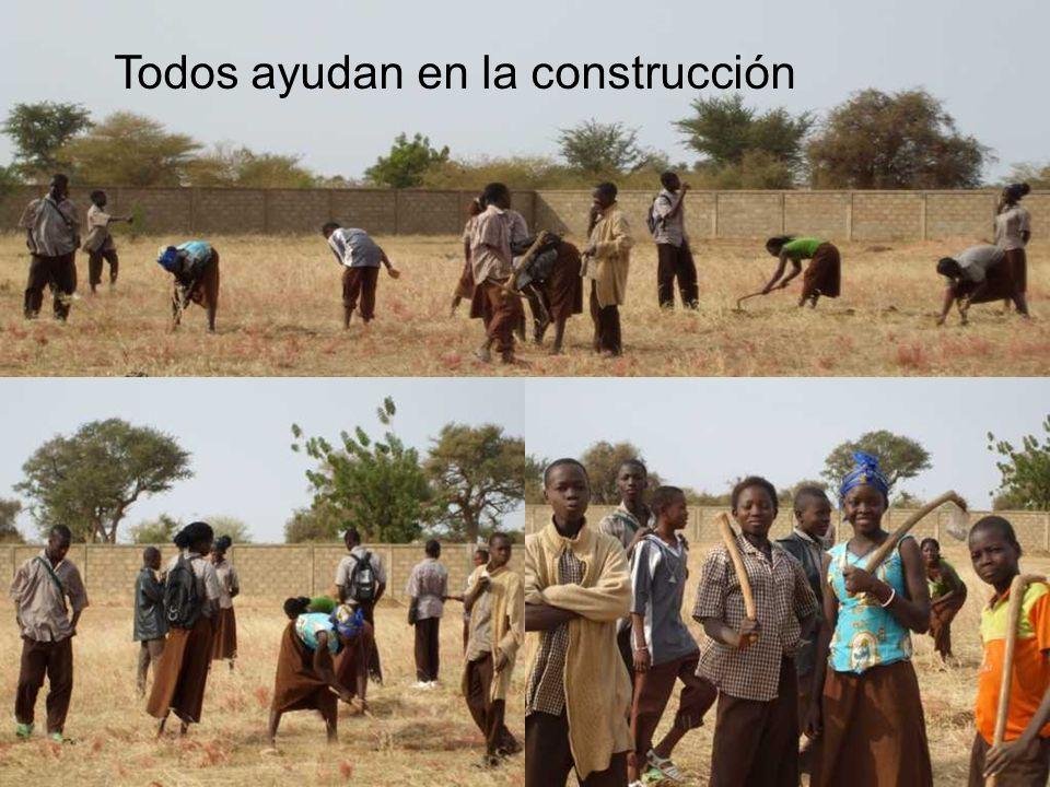 Todos ayudan en la construcción