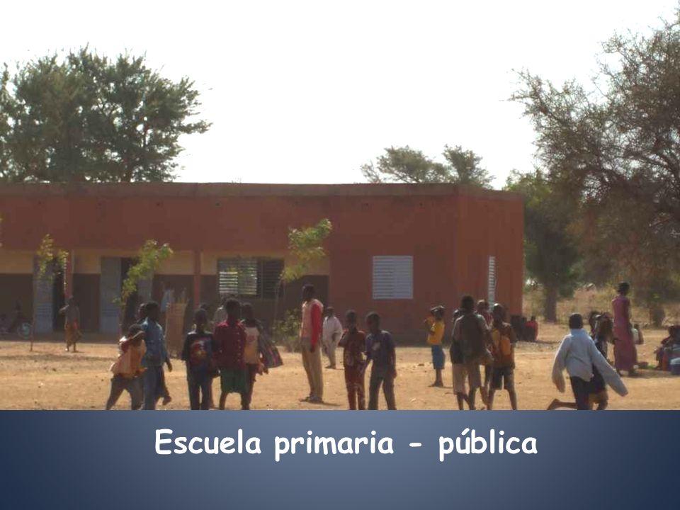 Escuela primaria - pública