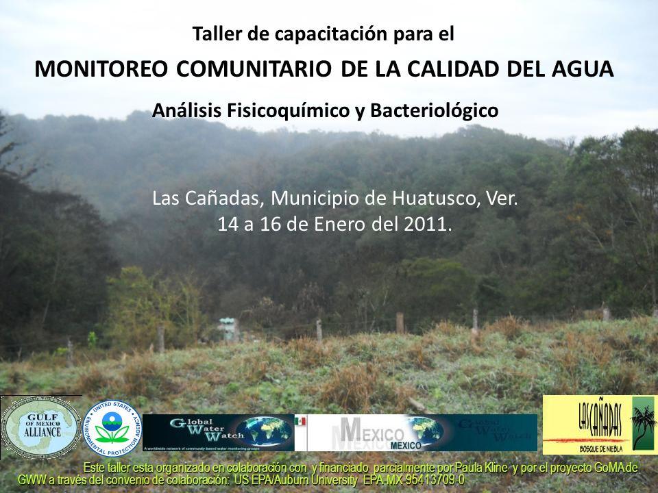 Taller de capacitación para el MONITOREO COMUNITARIO DE LA CALIDAD DEL AGUA Las Cañadas, Municipio de Huatusco, Ver. 14 a 16 de Enero del 2011. Anális