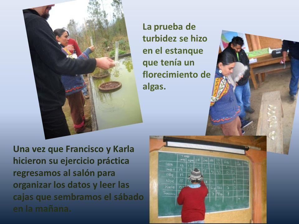 Una vez que Francisco y Karla hicieron su ejercicio práctica regresamos al salón para organizar los datos y leer las cajas que sembramos el sábado en