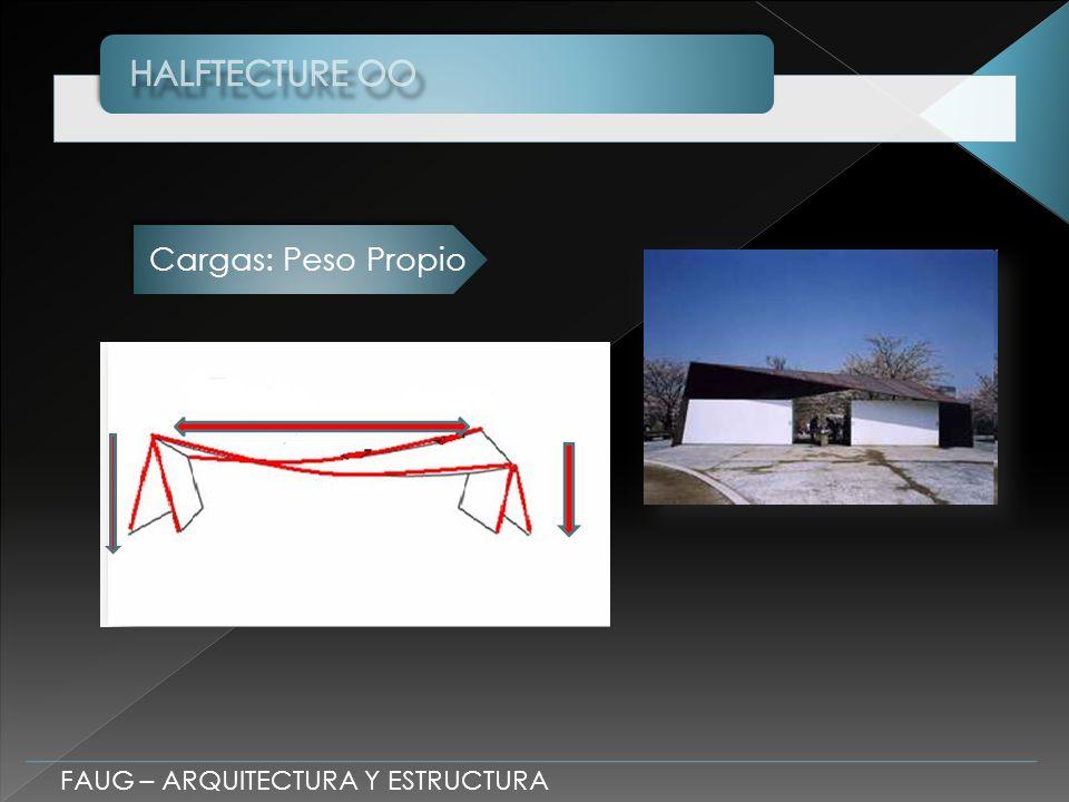 FAUG – ARQUITECTURA Y ESTRUCTURA Cargas: Peso Propio