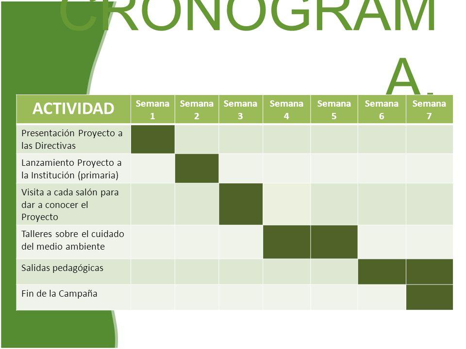 CRONOGRAM A. ACTIVIDAD Semana 1 Semana 2 Semana 3 Semana 4 Semana 5 Semana 6 Semana 7 Presentación Proyecto a las Directivas Lanzamiento Proyecto a la